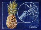 Building a Better Pineapple